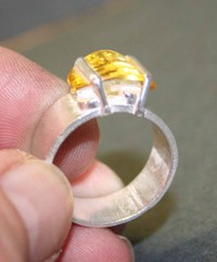 Yellow_ring_2